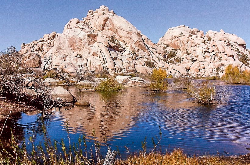 Joshua Tree National Park Tap Into Adventure