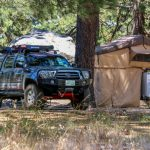 Thomas Mountain primitive camping