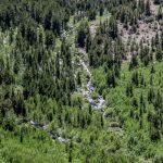 stream above Laurel Lake