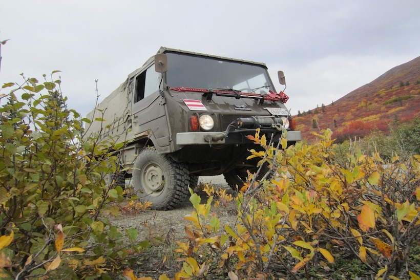 the adventure portal-rig of the month pinzgauer