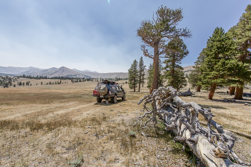 Coyote Creek Trail Tap Into Adventure