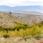 Owen's valley view from Wheeler ridge