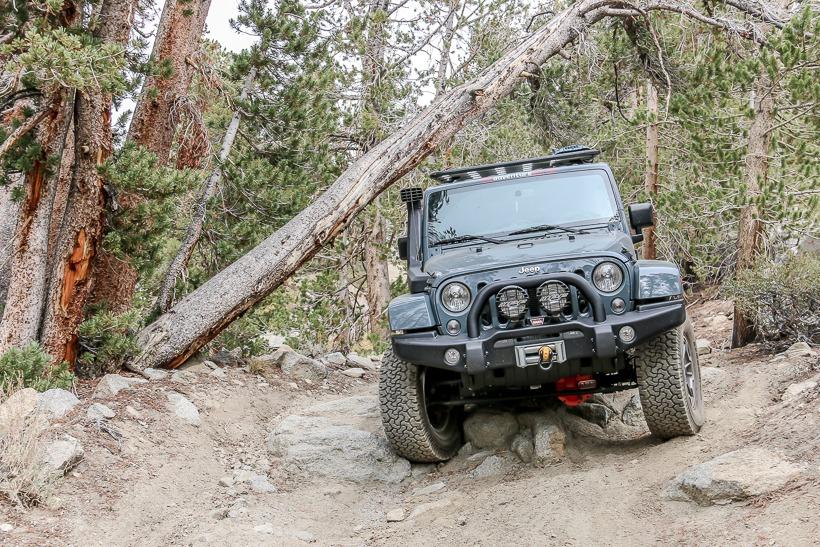 Squeeze wheeler ridge trail