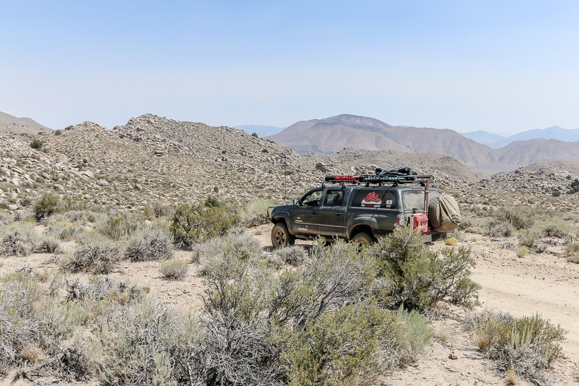 Sagebrush desert at the in the canyon.