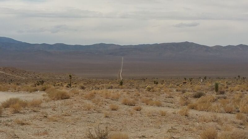 The longer road out, Gold point, NV
